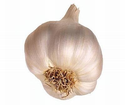 New Crop Fresh Garlic