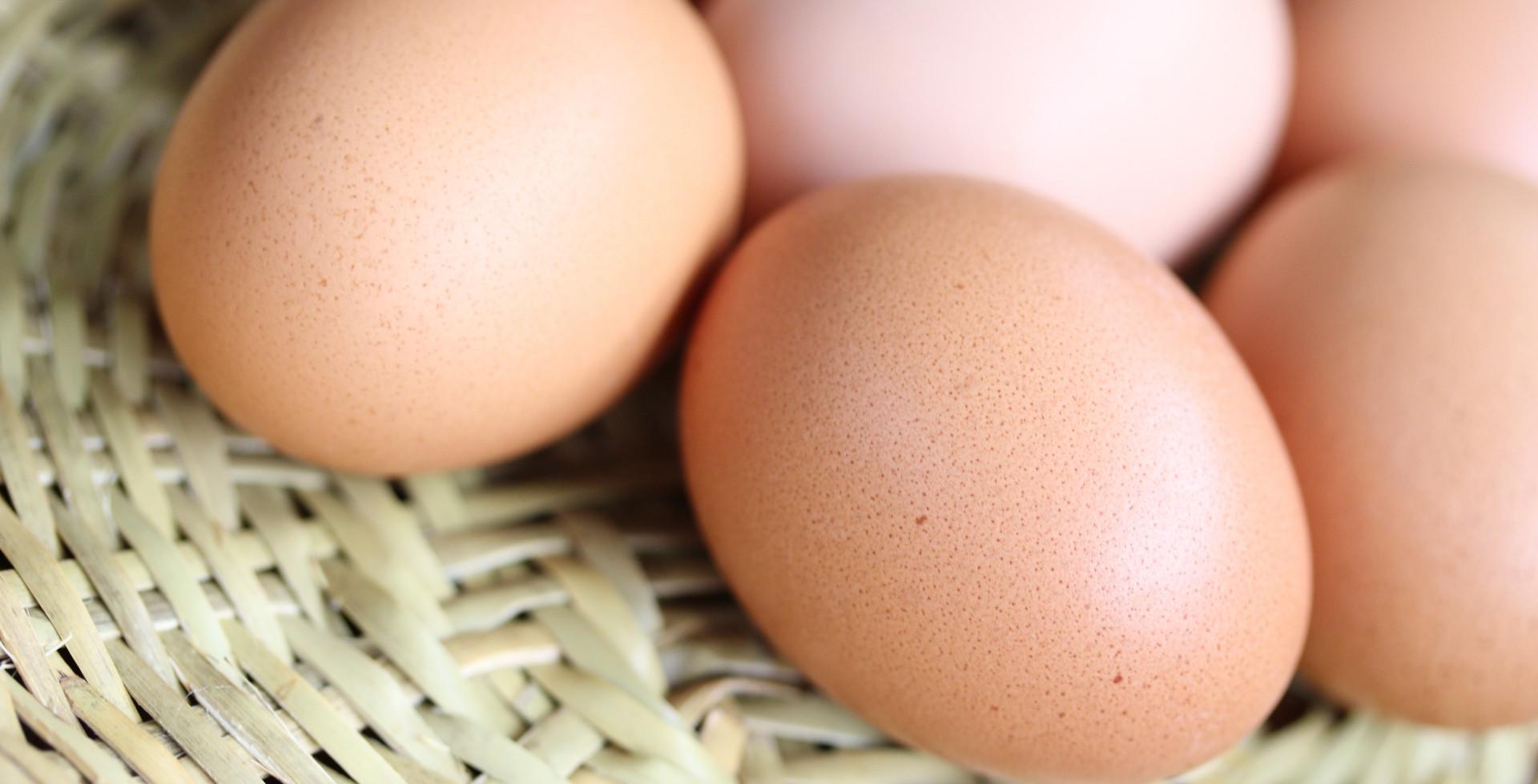 養鶏を中心にした生産・加工・販売 C社様