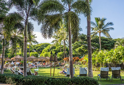 hawaii-1037080_960_720