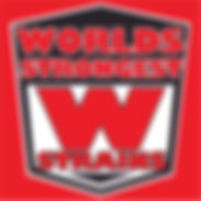 WSS LOGO RED Black White.jpg