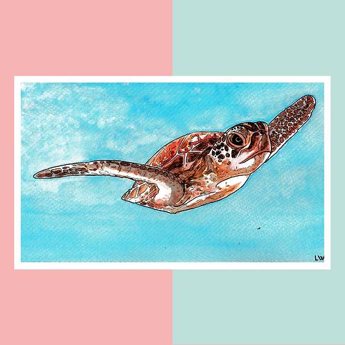 """Aquarelle """"Tortue de Mer"""""""