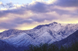 Palm Springs Sunset in Winter