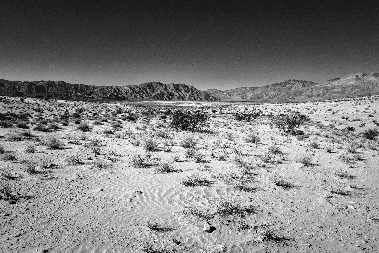 Anza-Borrego Desert, CA