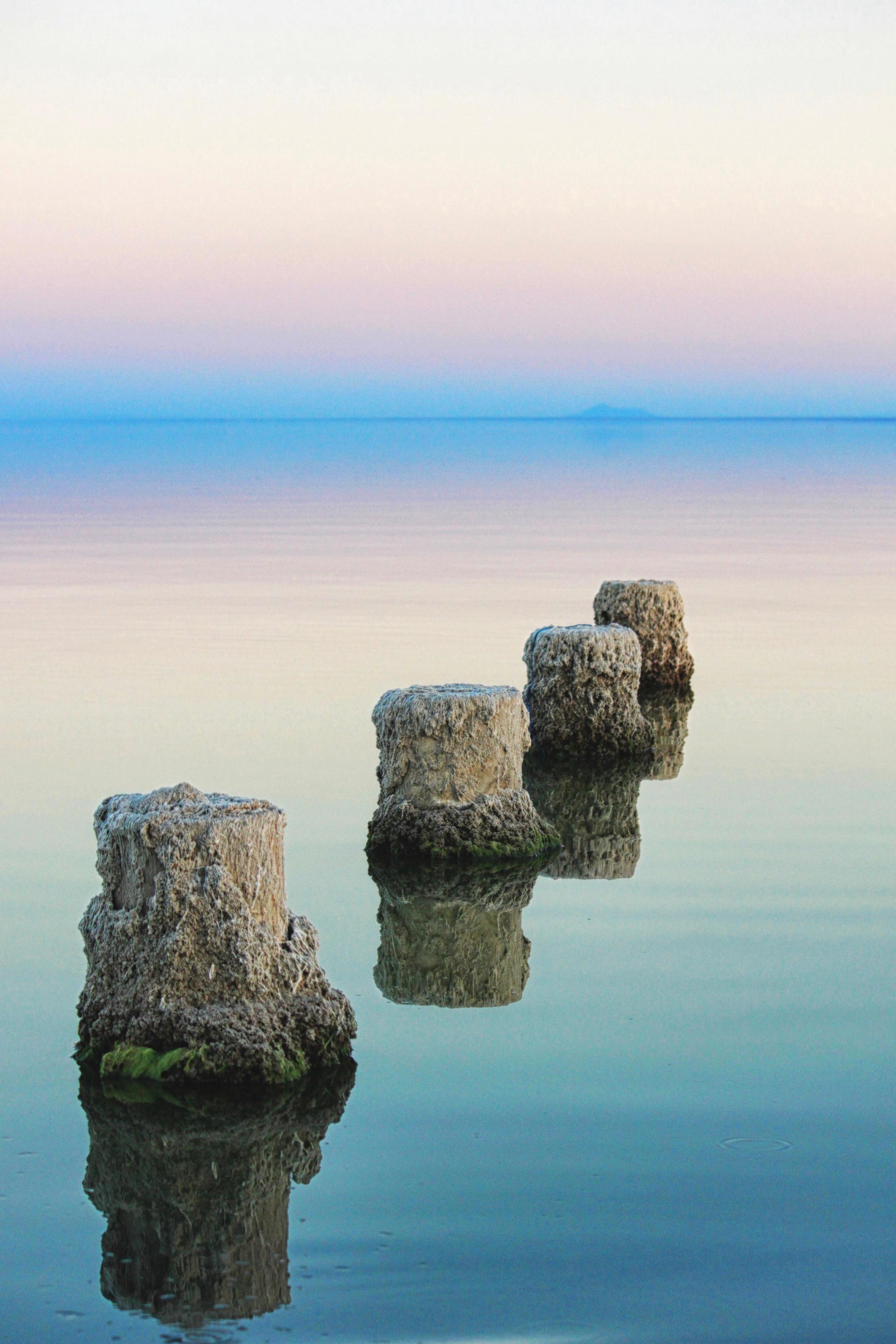 Salton Sea Pilings 1