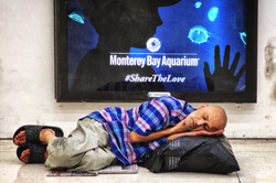 San Francisco, CA Homeless Man