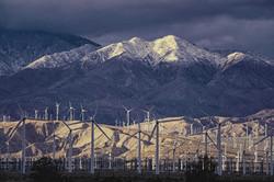 Palm Springs in Winter 2