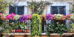 Rome Balcony