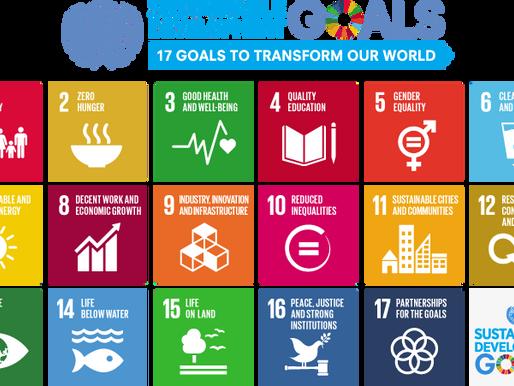 Sustainability for Freelancers and Translators.