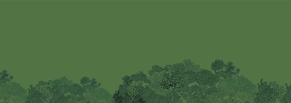 綠.png