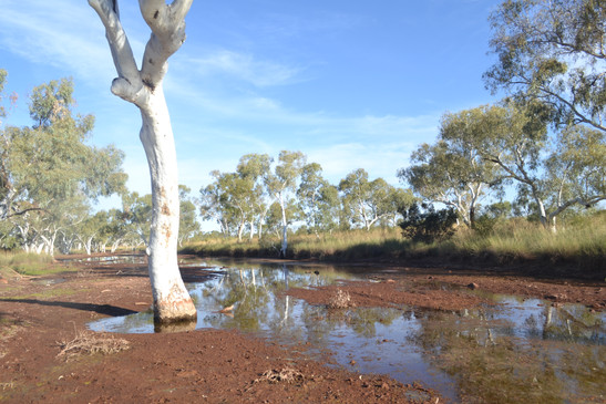 Marillana Creek