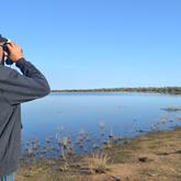 Water Bird Survey