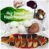 Happy Passover! Hag Sameah!