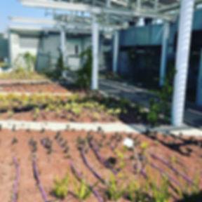 Today's discovery_ Porter Building of Tel Aviv University, hosting environmental science school, mob