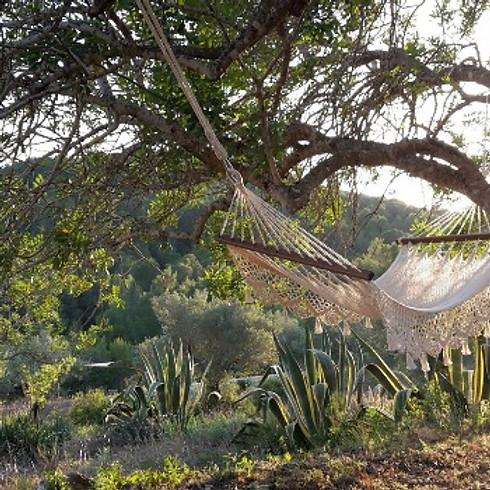 Nature Calls! Flow Yoga & Meditatie Retreat by Innerdoorway
