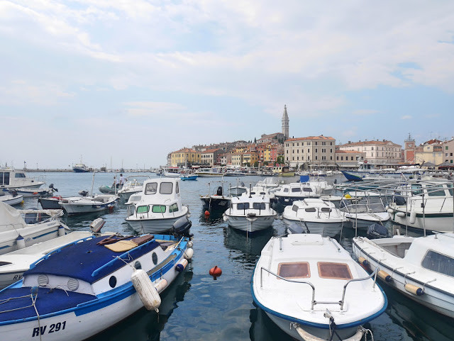 harbour-at-rovinj