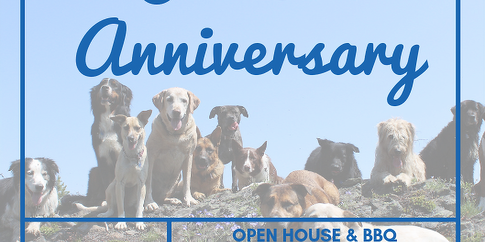 Our 5th Anniversary Party & Open House