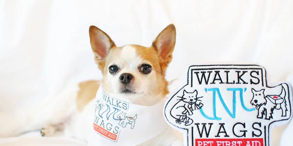 Walks'N'Wags Pet First Aid