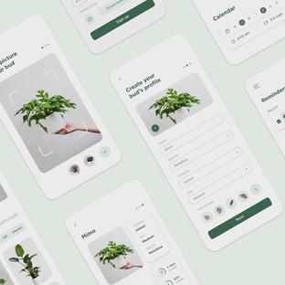 Plantbud
