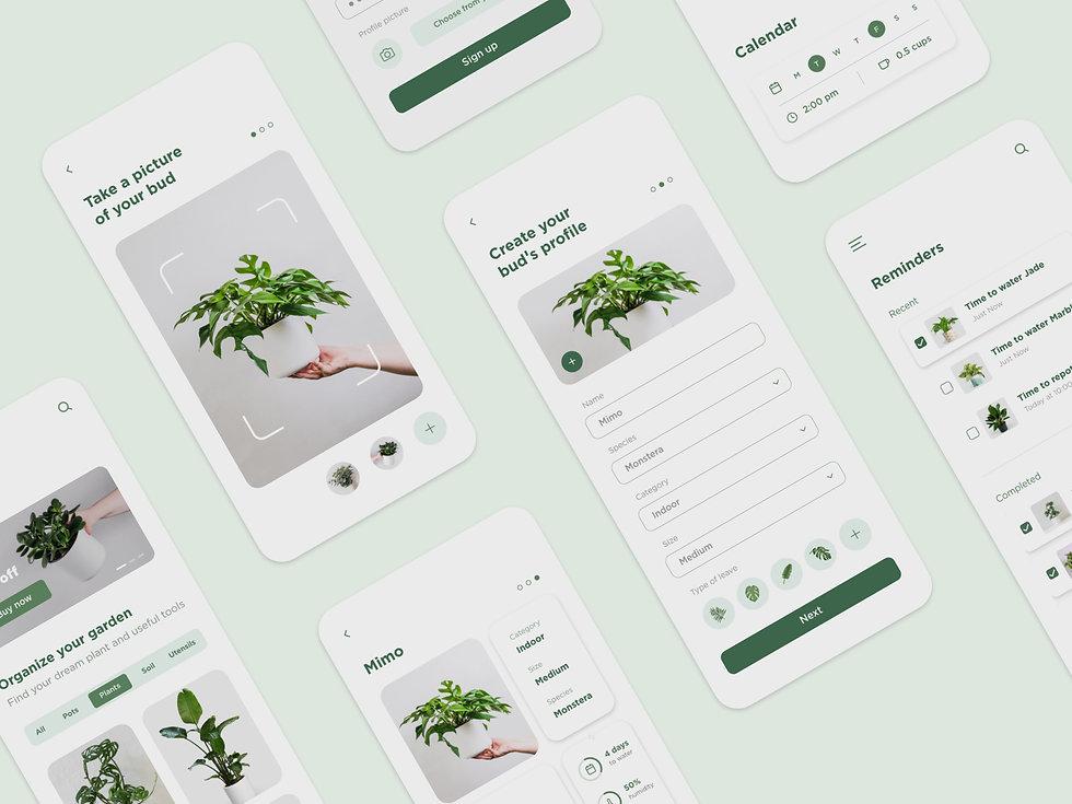 Cover-plantbud.jpg