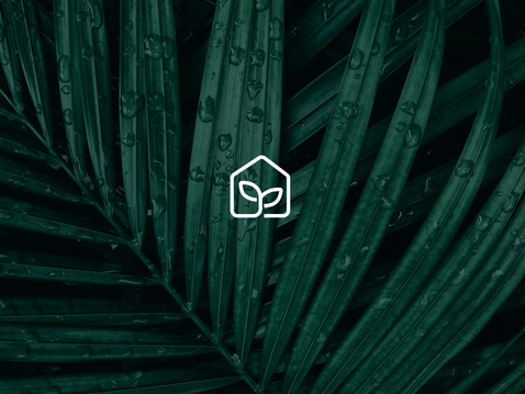 Visual Identity & UX/UI