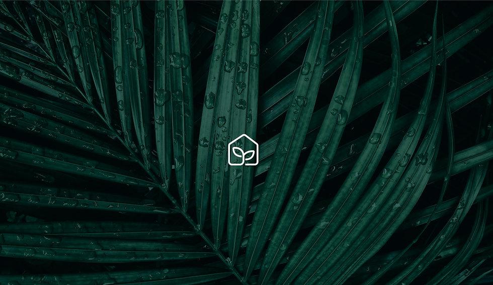 planthome-full-behance.jpg