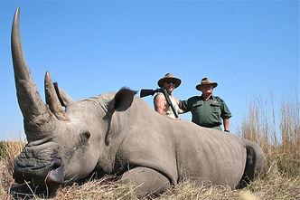white rhino hunting