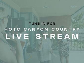 live stream cc.001.jpeg