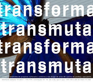 TRANSFORMA TRANSMUTA2.jpg
