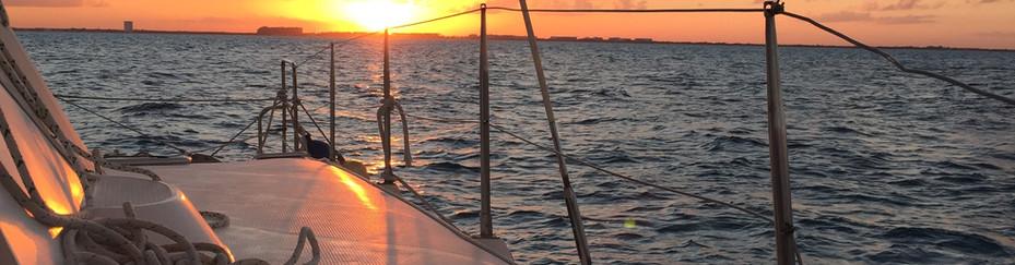 sunset-with-catmania.jpg