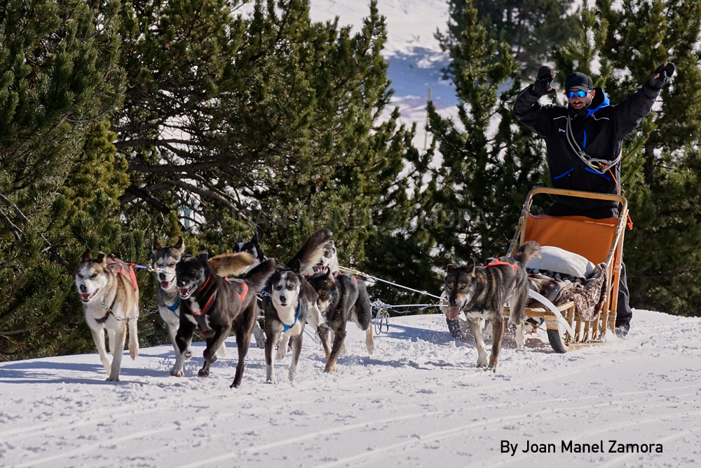 mushing andorra