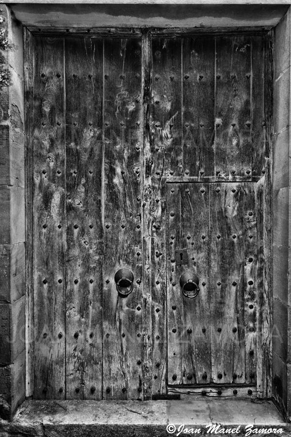 02876 DOOR-FINE ART