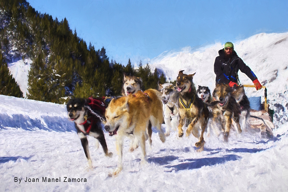 2408 Mushing Andorra