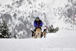 05310 ski joring