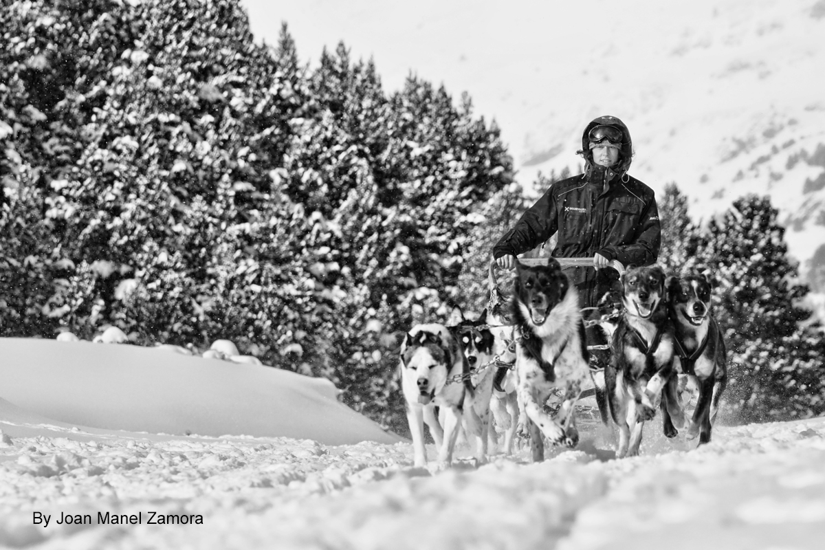 MUSHING ANDORRA08212