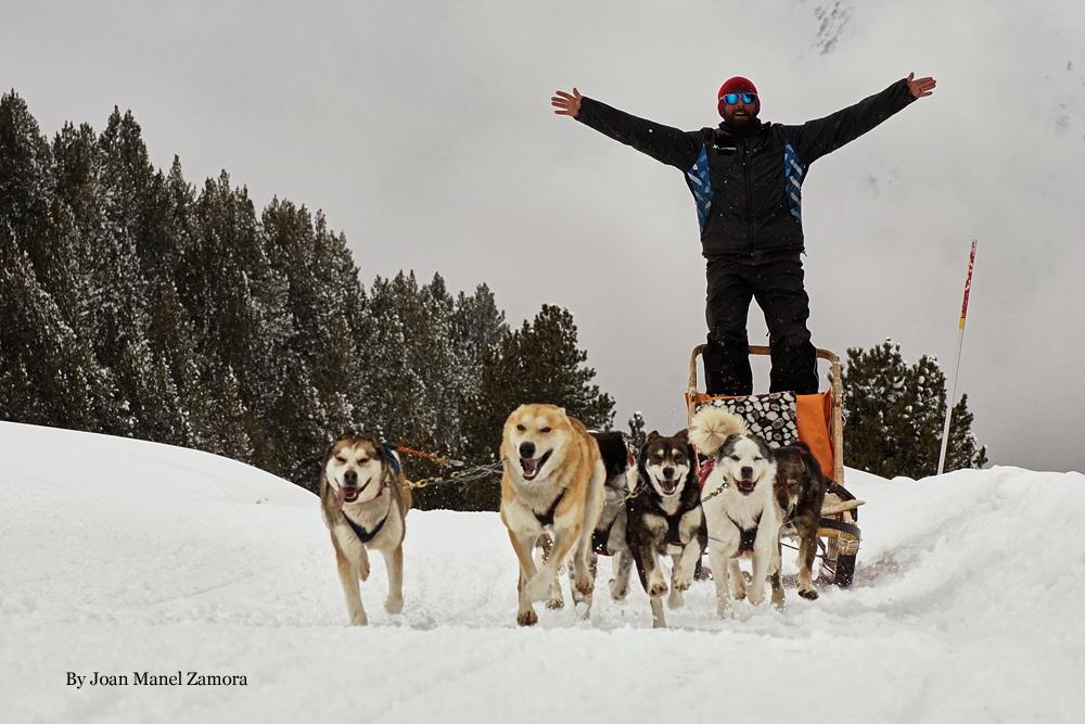 husky - mushing Andorra
