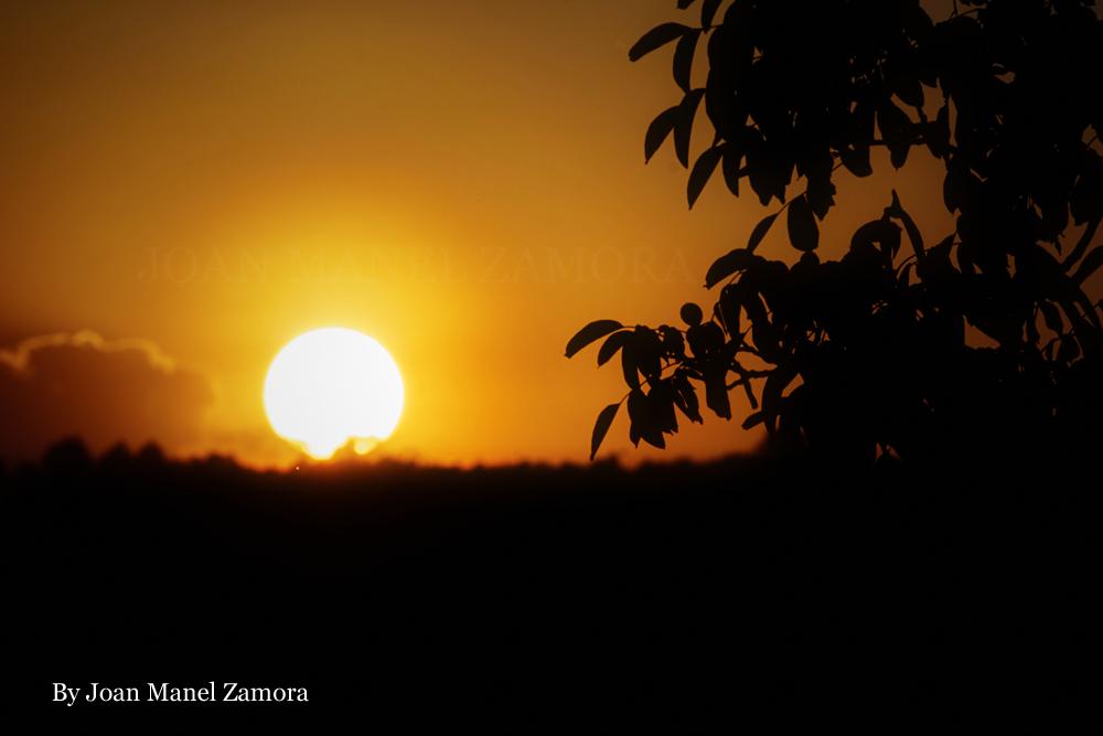 Sunset - Shadow