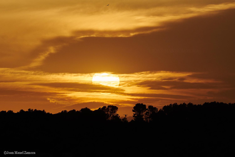03809 Sun & Clouds