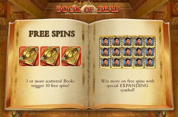 Online slot Book of Dead by Play'n GO