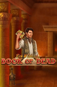 Slot Book of Dead Playn GO