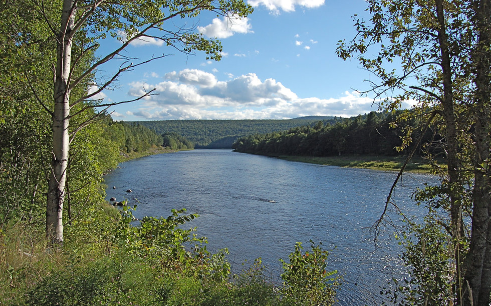 kennebec river.jpg