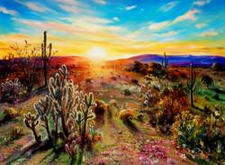 Sonoran Desert Sunset