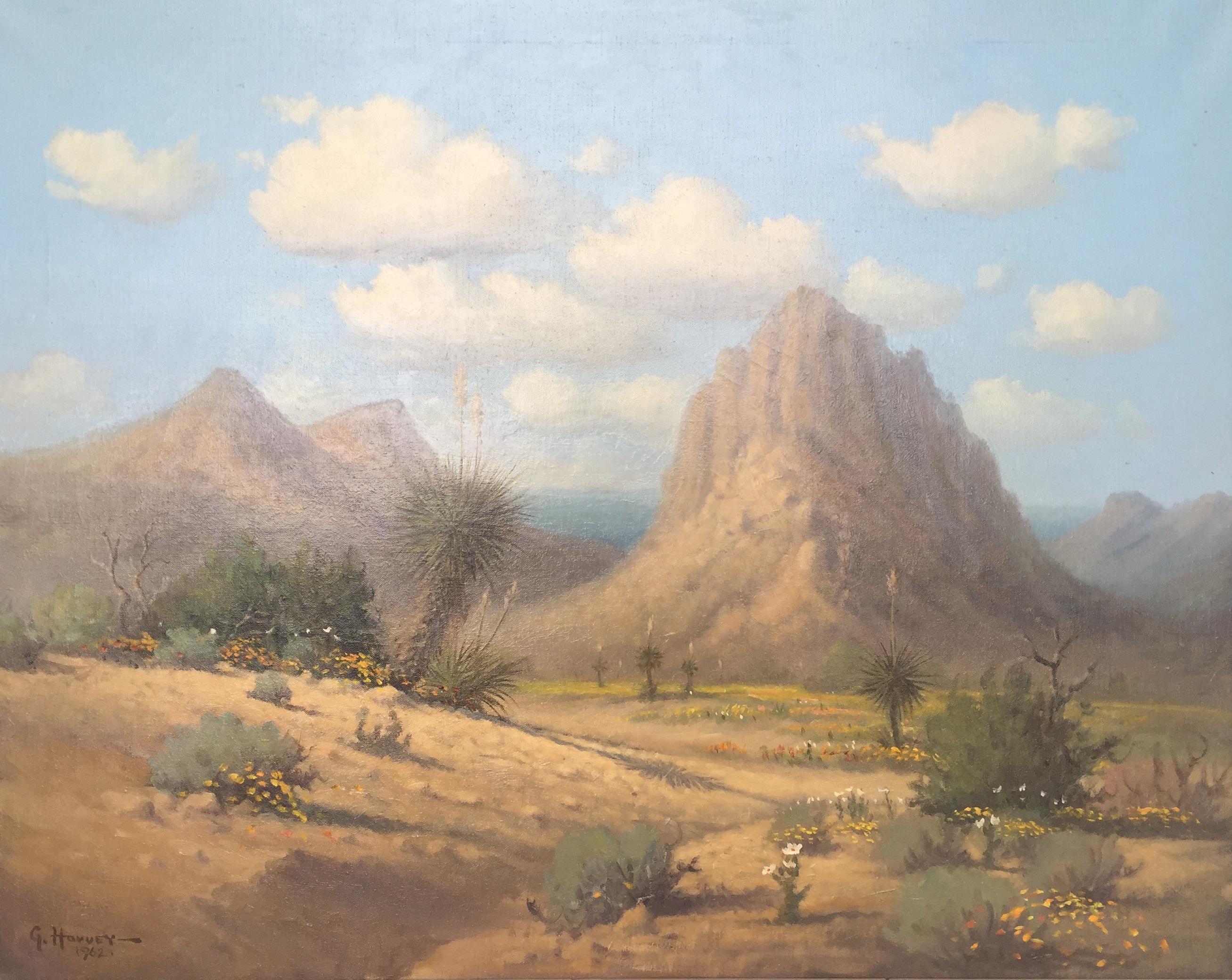Davis Mountain