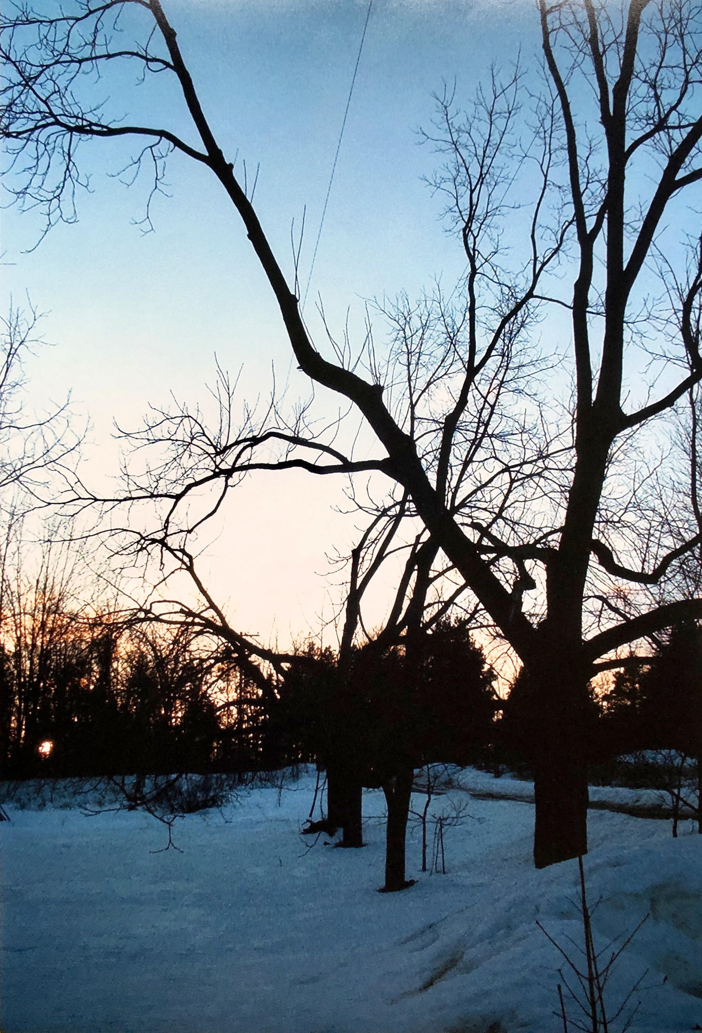 Good Night Winter Sun