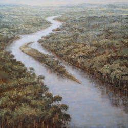"""River Shannon (Irlanda)"""
