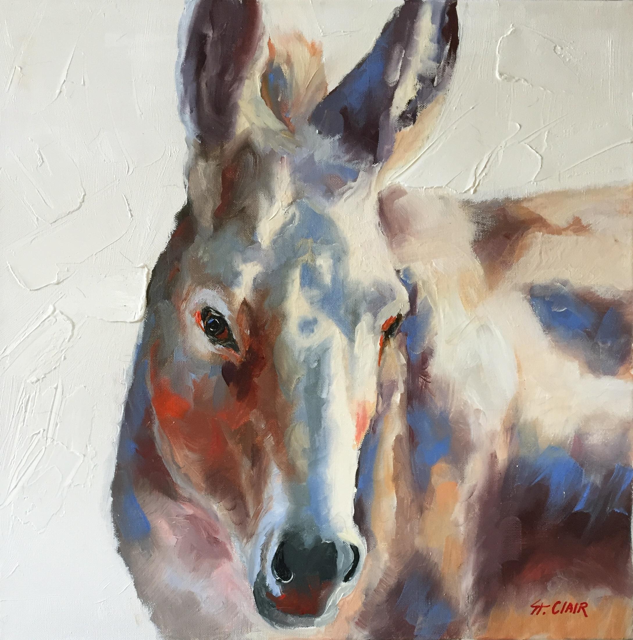 Donkey Dan