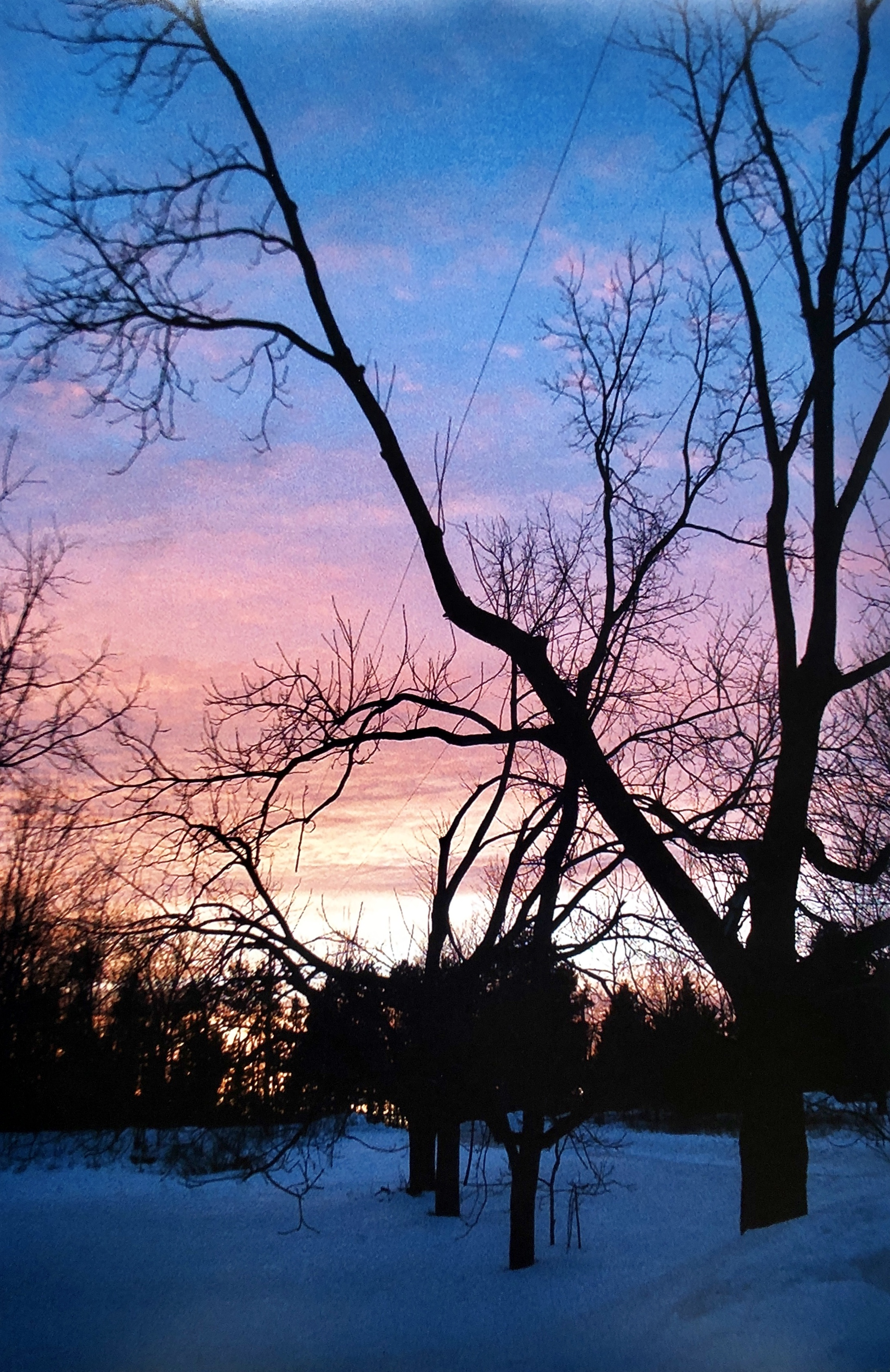 Calm Winter Sunset
