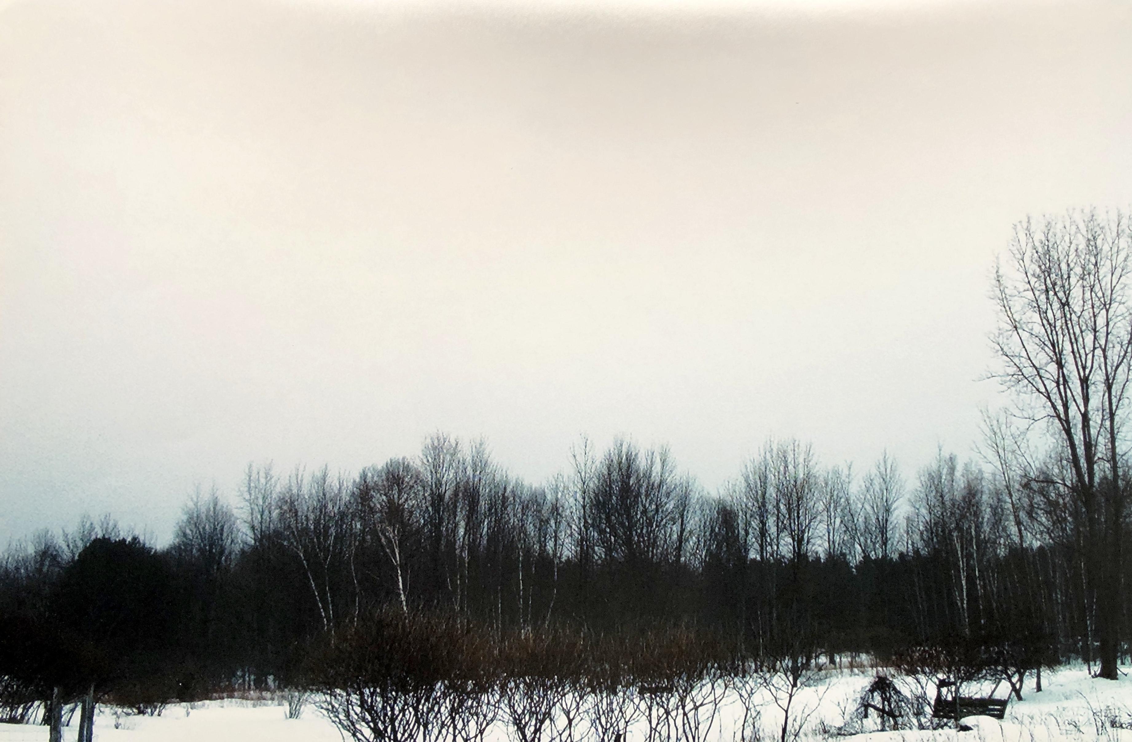 Gray Winter Day