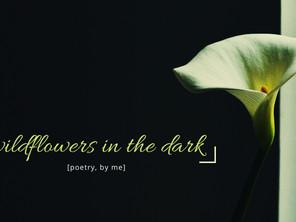 wildflowers in the dark: more poetry by me.
