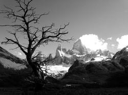 Fitz Roy, El Chalten - Argentina