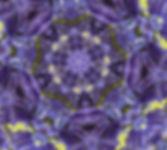 Bluebell Kaleidoscope.jpg
